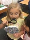 Magnifying her taste buds!